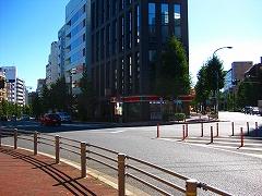 東京夢舞いマラソン_a0036808_014823.jpg