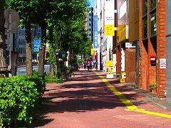 東京夢舞いマラソン_a0036808_023566.jpg