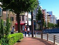 東京夢舞いマラソン_a0036808_025297.jpg