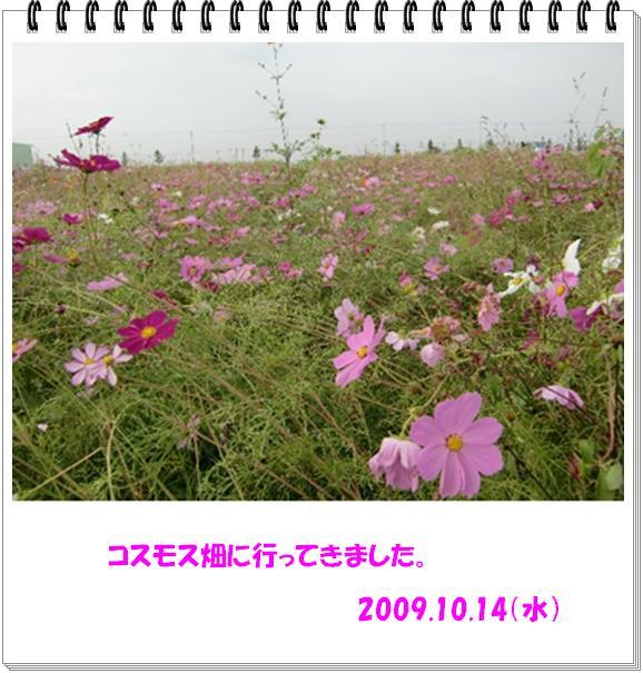 f0182121_23363651.jpg