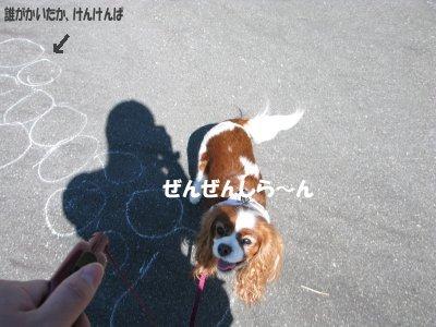 b0185323_111644.jpg