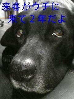 f0148927_18451014.jpg
