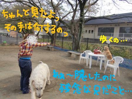 f0176830_17261261.jpg