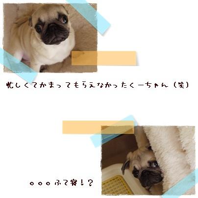 f0177165_21461272.jpg