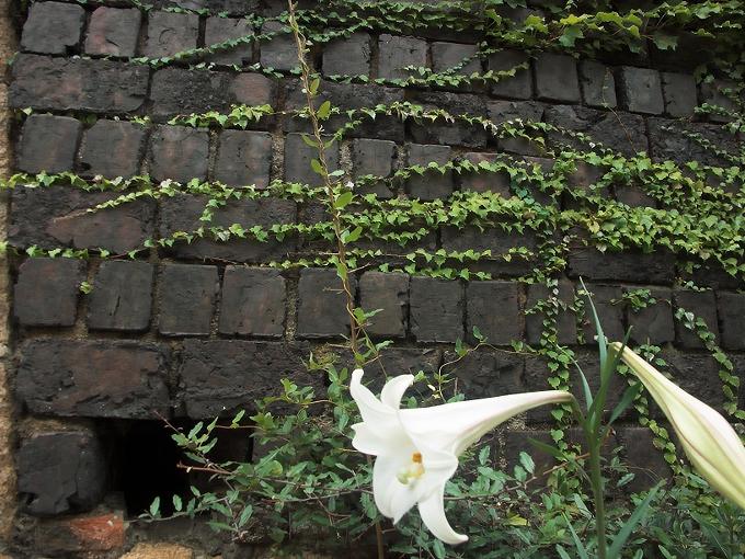犬島精錬所_f0116479_191867.jpg