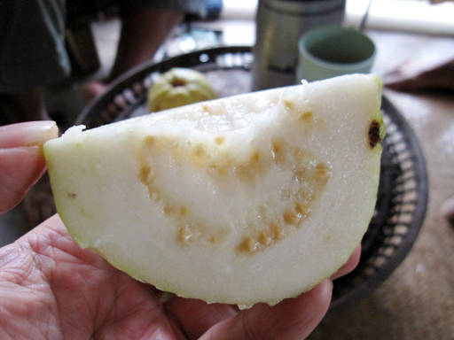 グァバの果実