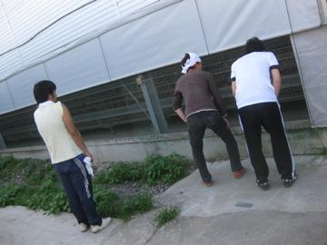 増田農園研修 _c0130206_12143244.jpg