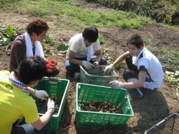 増田農園研修 _c0130206_128937.jpg