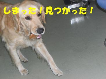 f0170713_16105215.jpg