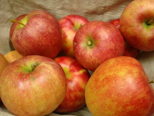 今日からリンゴダイエット!_c0125114_10225762.jpg