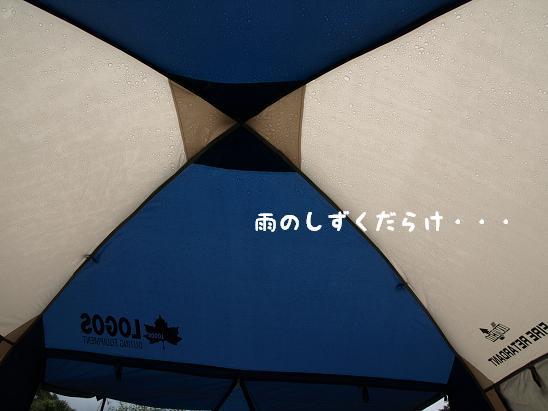 f0133316_1555133.jpg