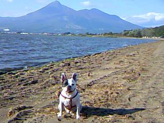 山と湖と犬_d0130536_18281174.jpg