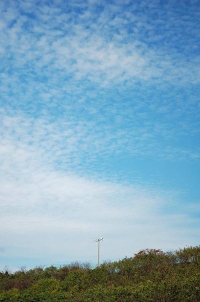 玄海ドライブ_b0016049_9364498.jpg