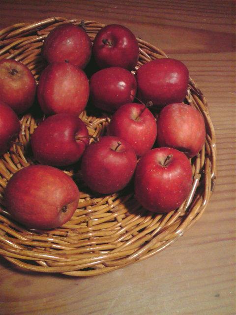 りんごの作用_d0129249_220461.jpg