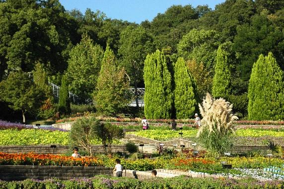 和歌山県植物公園緑花センター _b0093754_23561635.jpg