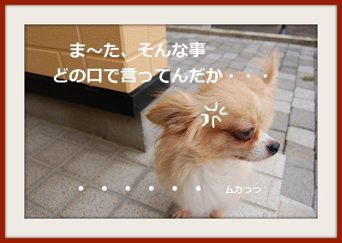 b0112758_20445526.jpg