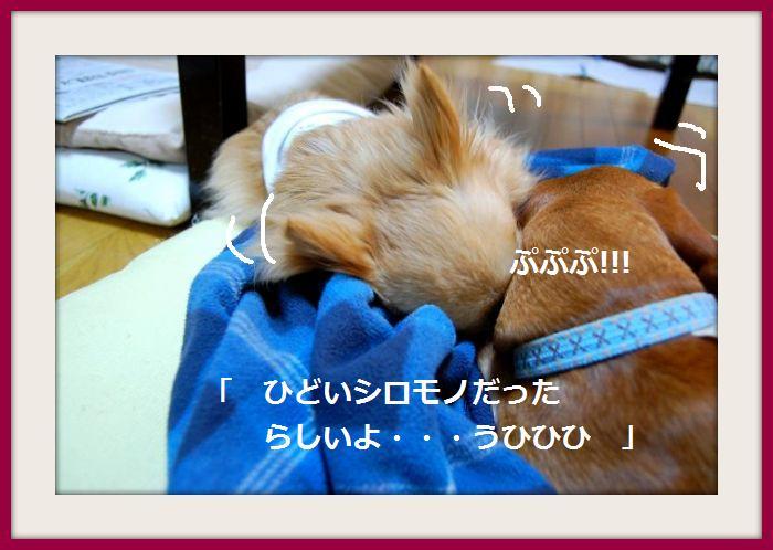 b0112758_2230373.jpg