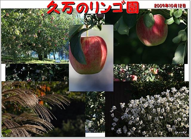 f0104569_20575966.jpg