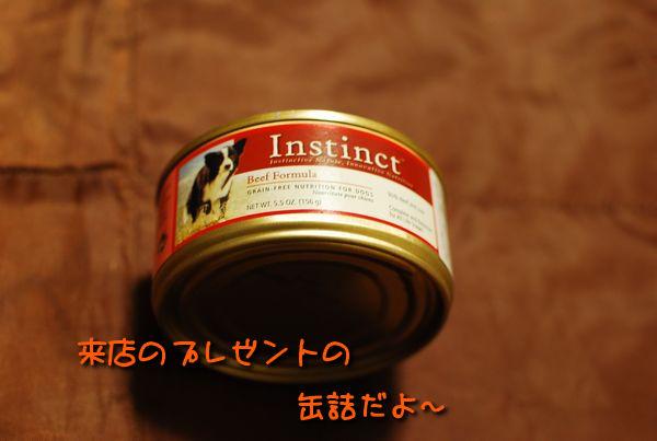 f0203612_234179.jpg