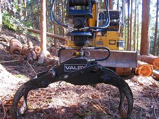 低投資型小規模林業_e0002820_6285314.jpg