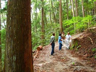 低投資型小規模林業_e0002820_642524.jpg