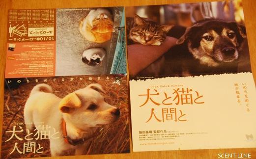 映画 「犬と猫と人間と」_c0099133_8452769.jpg