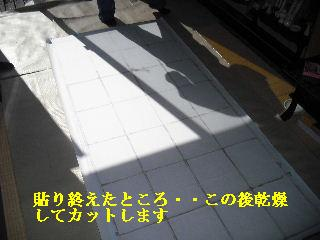 f0031037_20512712.jpg