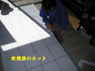 f0031037_20514759.jpg