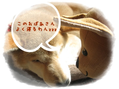 「手作り」の醍醐味_c0049950_8491032.jpg