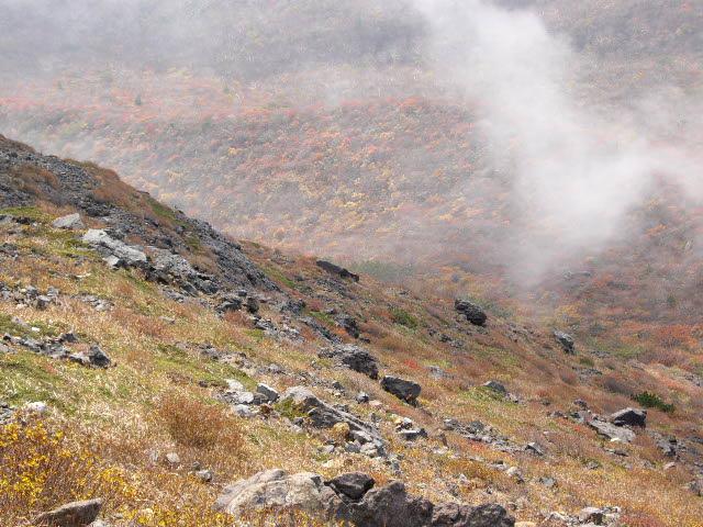 那須・茶臼岳の秋と花_d0116059_14541716.jpg
