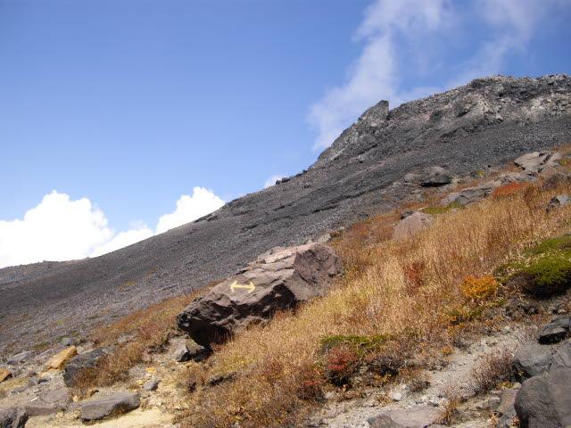 那須・茶臼岳の秋と花_d0116059_1523558.jpg