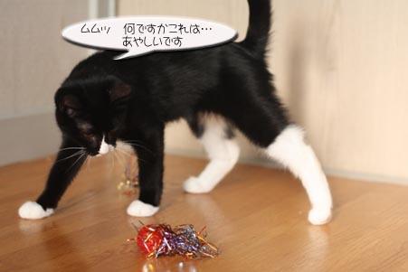 キラキラボール、セブン君編_e0151545_21302358.jpg