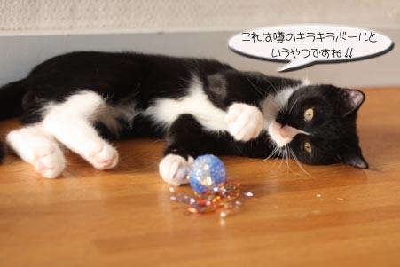 キラキラボール、セブン君編_e0151545_21304018.jpg