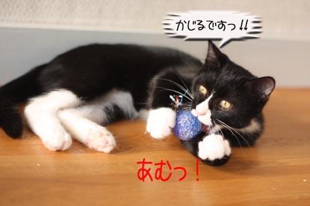 キラキラボール、セブン君編_e0151545_21311466.jpg