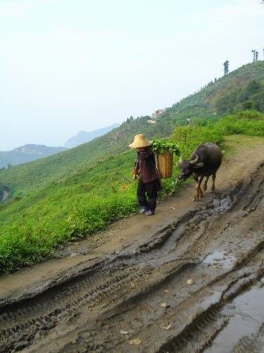 歩いて元陽郊外の村へ_f0055745_19193236.jpg