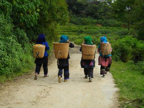 歩いて元陽郊外の村へ_f0055745_1919454.jpg