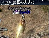 b0083880_1141661.jpg