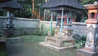 バリ島2009 - 生活と仕えること_a0057402_18574574.jpg