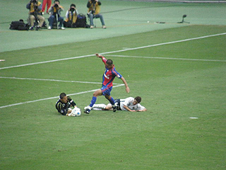 FC東京×柏レイソル J1第29節_c0025217_14353746.jpg