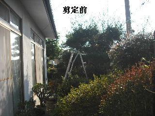 f0031037_18404459.jpg