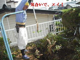 f0031037_18444359.jpg