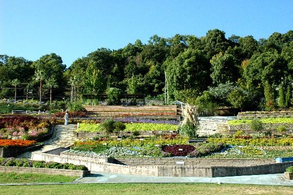 和歌山県植物公園緑花センター _b0093754_23574130.jpg