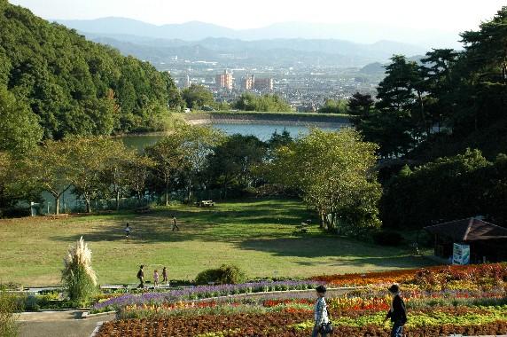 和歌山県植物公園緑花センター _b0093754_23582072.jpg