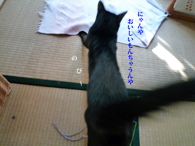 c0183167_2158475.jpg