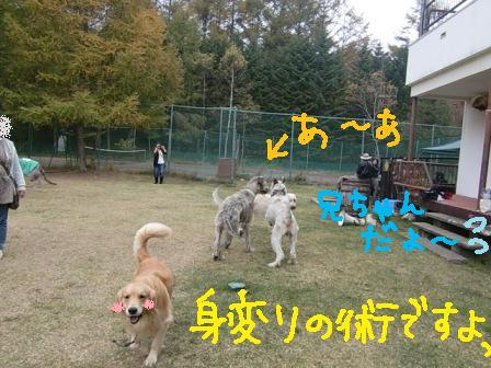 f0176830_182485.jpg