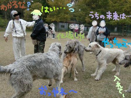 f0176830_18355952.jpg