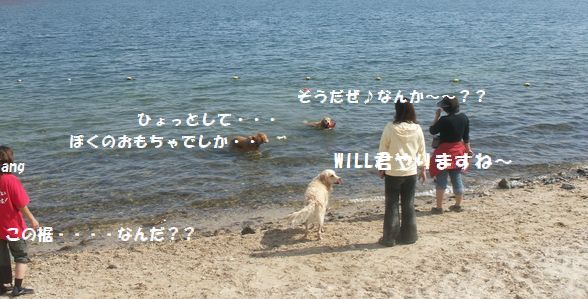 b0127531_1332561.jpg