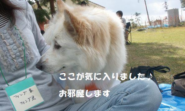 b0127531_15185564.jpg