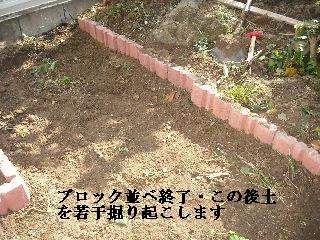 家庭菜園作り_f0031037_2022571.jpg