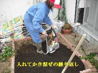 家庭菜園作り_f0031037_20261721.jpg